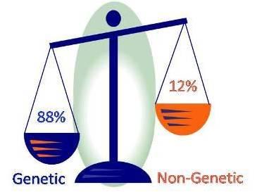 Mutatii genetice si diabetul
